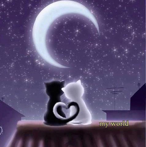 Buenas noches amigos dulces sueños